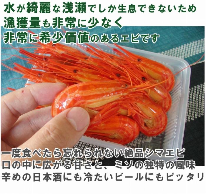 水がきれいな浅瀬でしか生息できないため漁獲量も非常に少なく非常に希少価値のあるエビです
